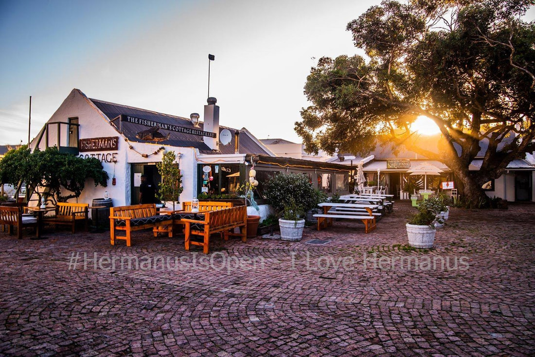 fabulous cuisine and quaint restaurants in Hermanus, near Cape Town, South Africa
