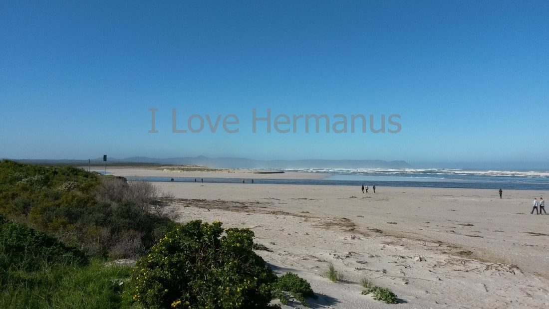 Huge beaches and wide open spaces to explore and enjoy in Hermanus, near Cape Town, South Africa
